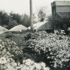Collectie bloemisterij Van Hecke